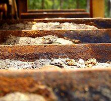 Rusty Dozer Tracks......... by debsphotos