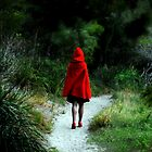 little red riding hood by robotsdream