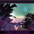 Purple Paradise by Laurie Rawdon