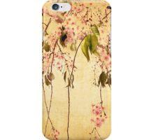 Vintage Blossom iPhone Case/Skin