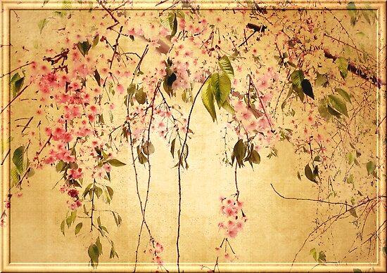 Vintage Blossom by Jessica Jenney