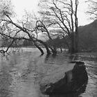 Derwent Water by Blondilox