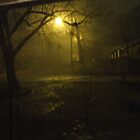 Night Scene During a Heavy Rain by Ray1945