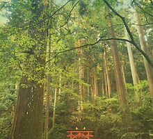 Shinto Shrine Deep In the Forest by Beverly Claire Kaiya