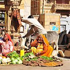 Fresh vegies in India by Mottoy