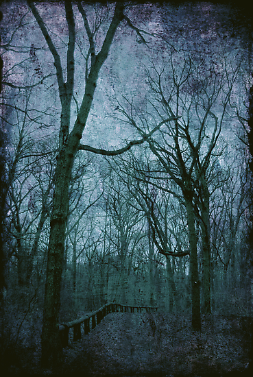 The Blue Path by Sonja Svete