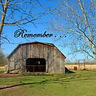 Remember . . . by Bonnie T.  Barry