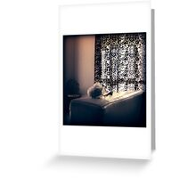Search Lights Greeting Card