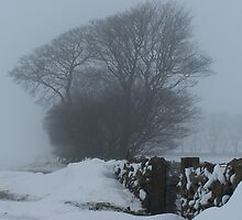 White out by lpleeds5