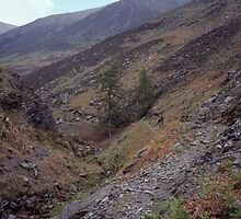 Path up high on Skiddaw Lake District England 198405240016m by Fred Mitchell