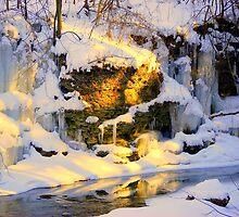 A Mid-Winter Stream by buddykfa