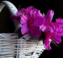 Azalea Basket by Jonicool