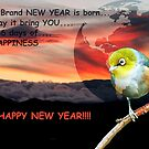 A BRAND NEW YEAR IS BORN!!! - NZ  by AndreaEL