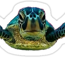 SPACE TURTLE Sticker
