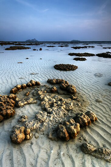 Reef Tide Two by Robert Mullner