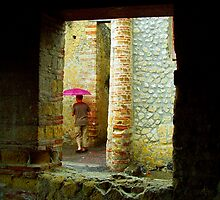 Escaping the rain, Herculaneum by Elaine Stevenson
