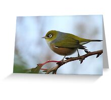 Oh.. Happy Days Are Here Again - Silver-Eye - NZ Greeting Card