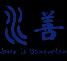Avatar The Last Airbender/The Legend of Korra : Water is Benevolent by AvatarSkyBison