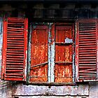 Roman blinds by pault55