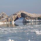 Ice Bridge by Terry1966