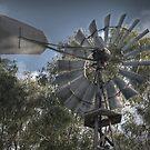Old Windmill by palmerphoto