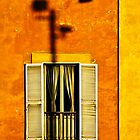Shadow of light #2 by Csaba Jekkel