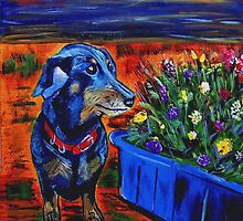 Dachshund and Flowerpot by hickerson