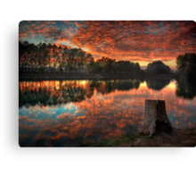 A Mother Nature's Gift Canvas Print