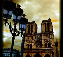 Notre Dame Cathedral Stands Strong by Andrew Wilson