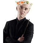 draco with flower crown by sherlokian
