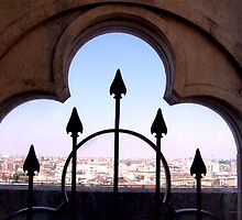 Milan from the Duomo by Lee Kerr