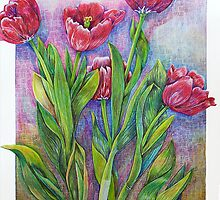 Tulips with love... by rasama