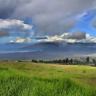 Upcountry Maui by djphoto