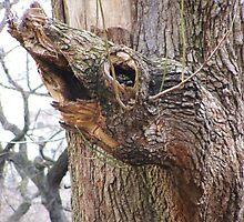 Tree Beast by David White