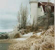 November Winds, Point Betsie by F.  Kevin  Wynkoop