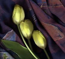 Flowers on Black by Nancy Polanski