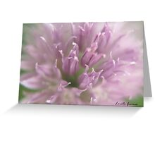 Purple Chive Greeting Card