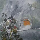 Robin Redbreast by andy davis