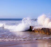 Bluewater Bay, Port-Elizabeth,Eastern Cape, South Africa by Qnita