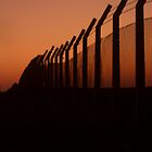 Fenceline by Justin Shaffer