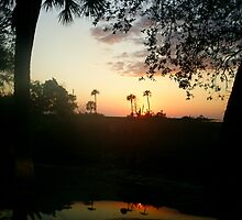 Unspoiled sunset on the Gulf of Mexico, Inglis, Florida March 1, 2008 by jcserlo