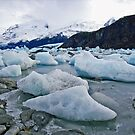 Glacier's end by Elaine Stevenson