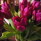 Purple Tulips by Bernadette Claffey