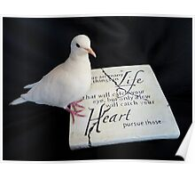 Pursue Your Heart... - White Dove - NZ Poster
