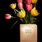 Faith in Bloom by Sheryl Kasper