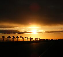 Palm Springs Surise Delight by radchuck03