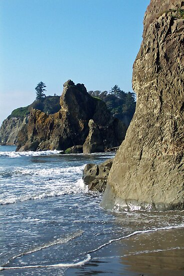 Sea Stacks, Olympic National Park, Washington by Lynn Bawden