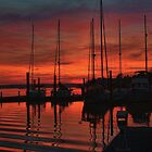 Sunset at the marina by Timothy Gass