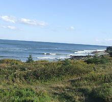Halifax Shoreline by kk1963
