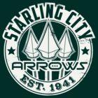 Starling City Arrows Version V02 by coldbludd